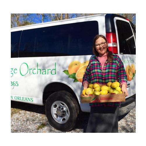 Isabelle's Orange Orchard Logo