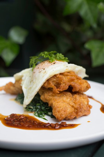 Chicken-Fried Rabbit