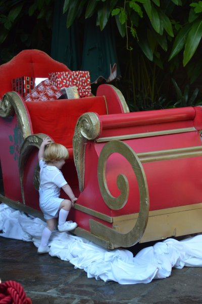 Child climbing on sleigh